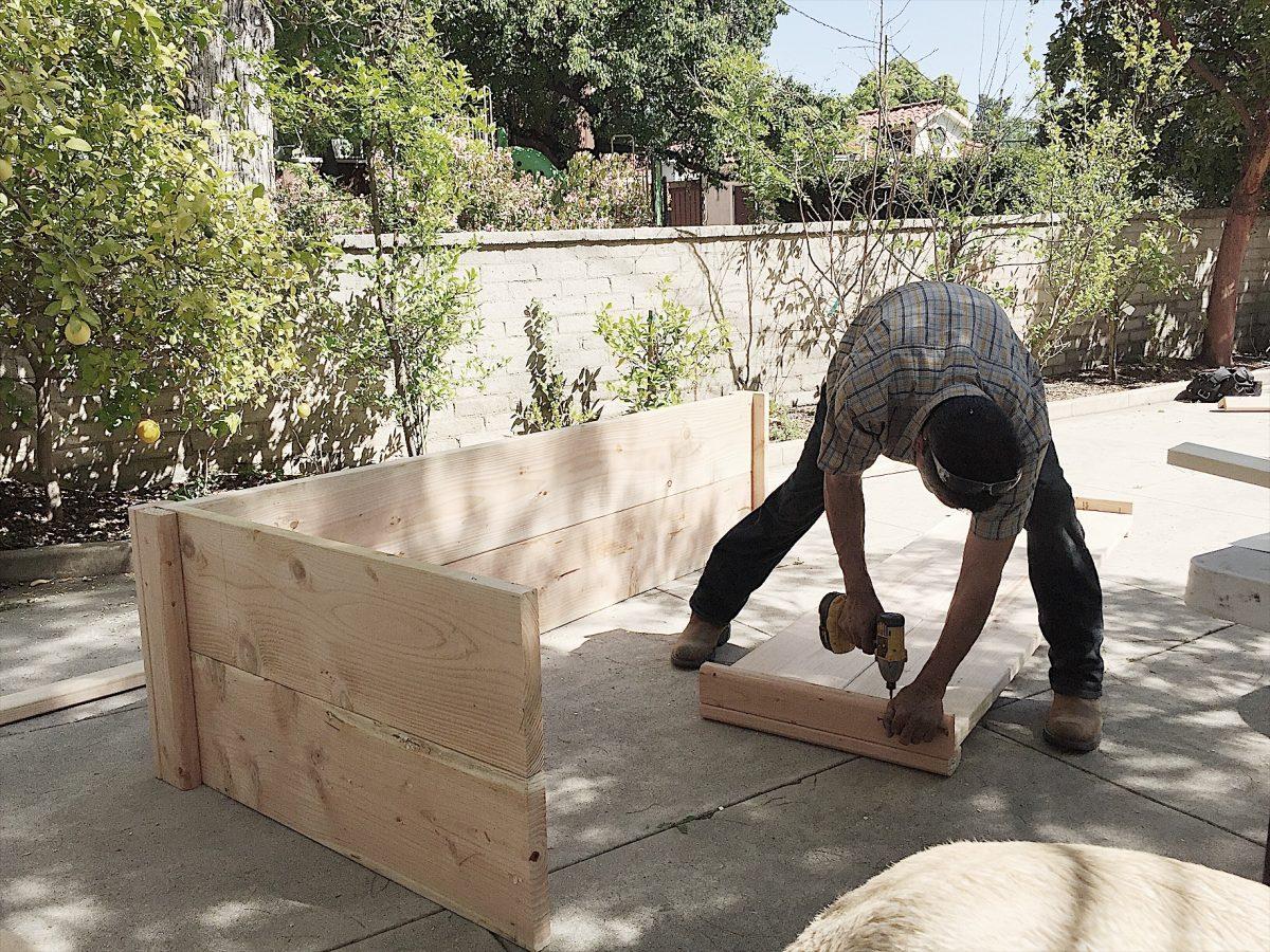 making a garden.JPG