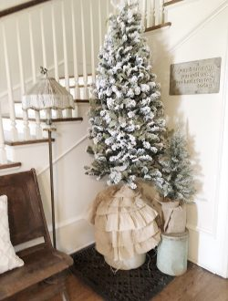 Christmas Tree in entry way