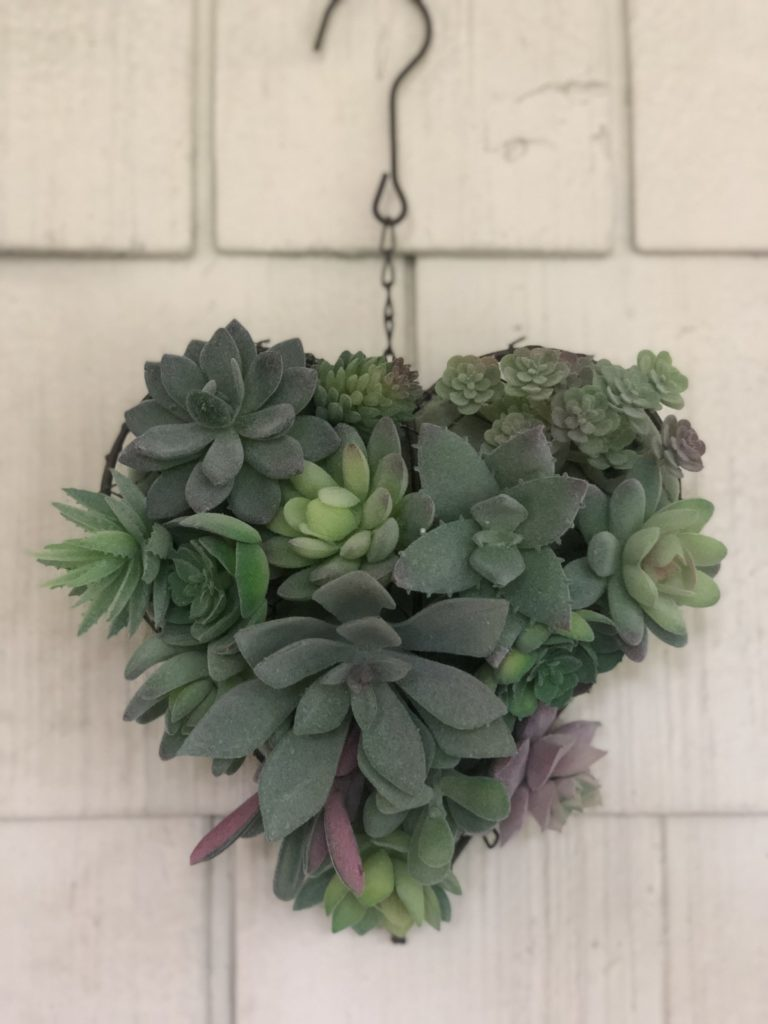 heart shaped succulent 6
