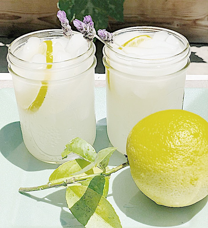 summer sips meyer lemon