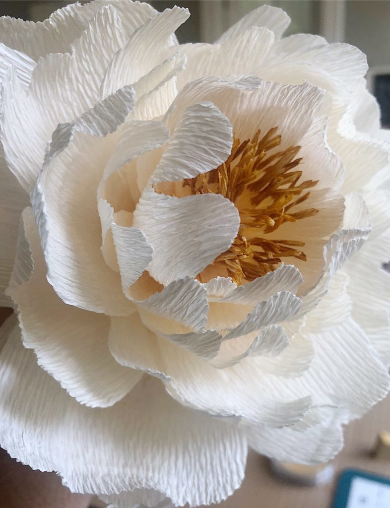 How to make paper peonies 10