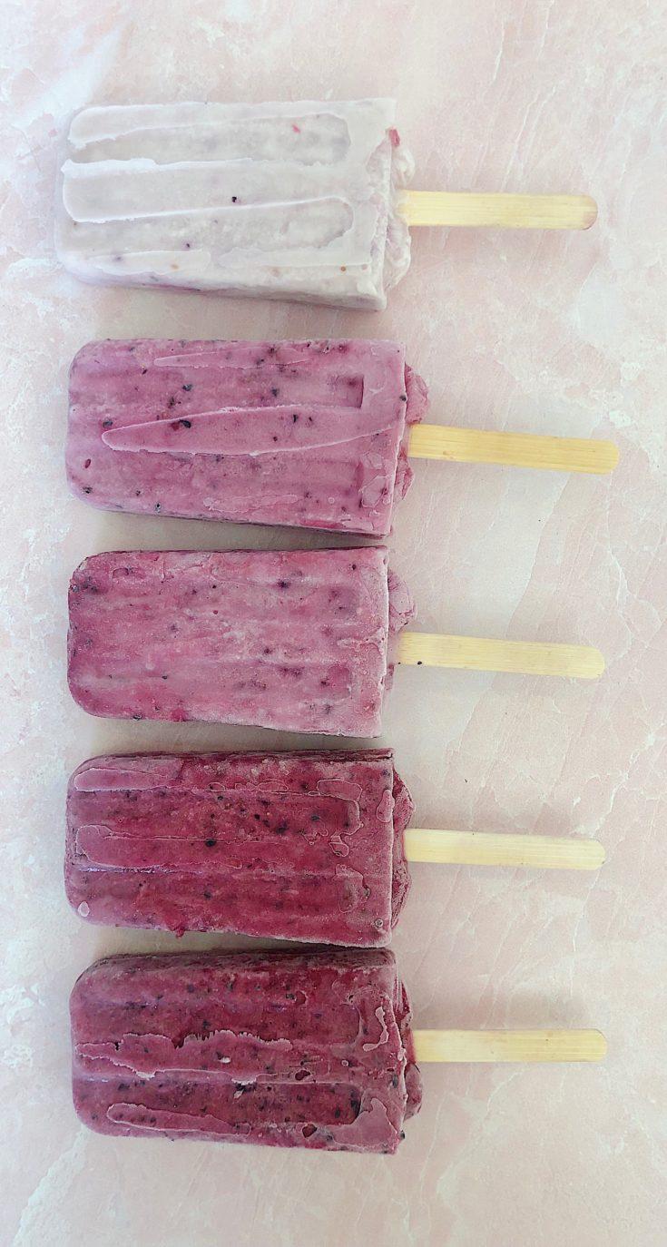 Raspberry Blueberry Coconut Popsicles