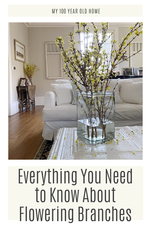 I love bringing flowering branches into our home. It's such a wonderful way to bring the outdoors in and add color and a beautiful scent to any room.