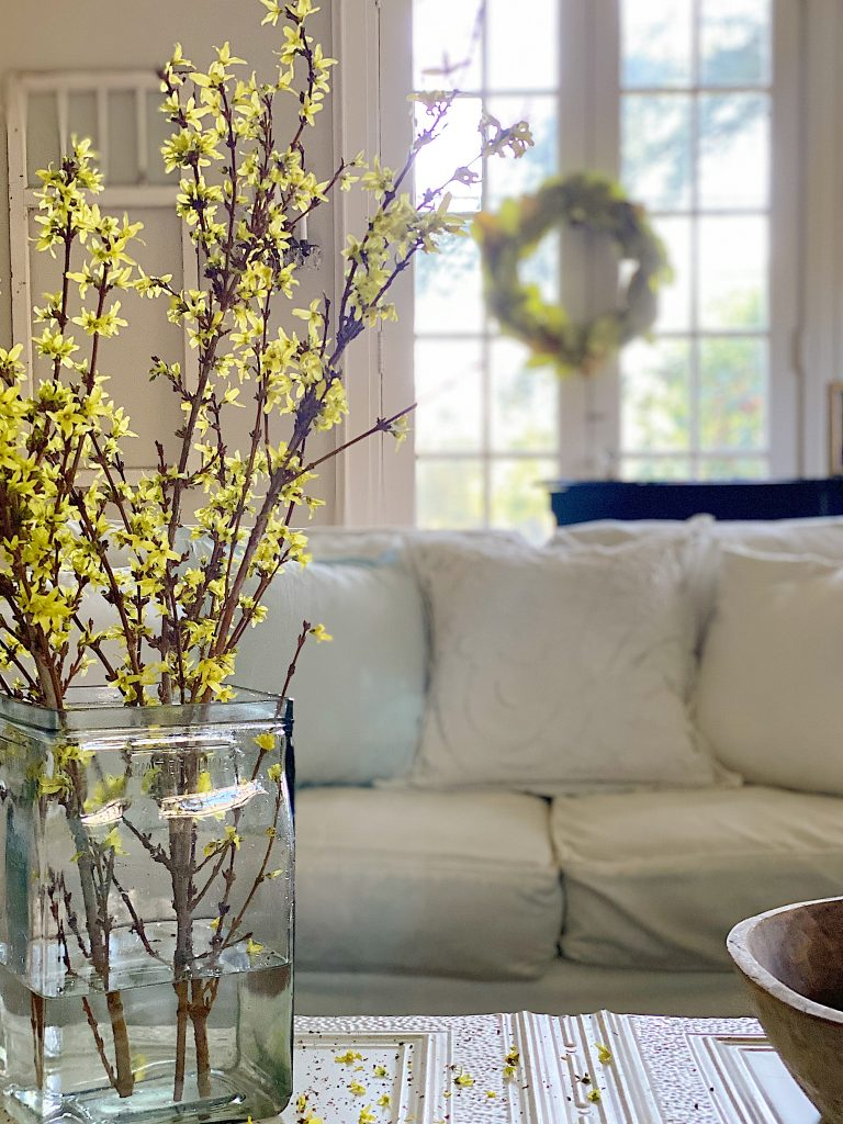 flowering branches for your home