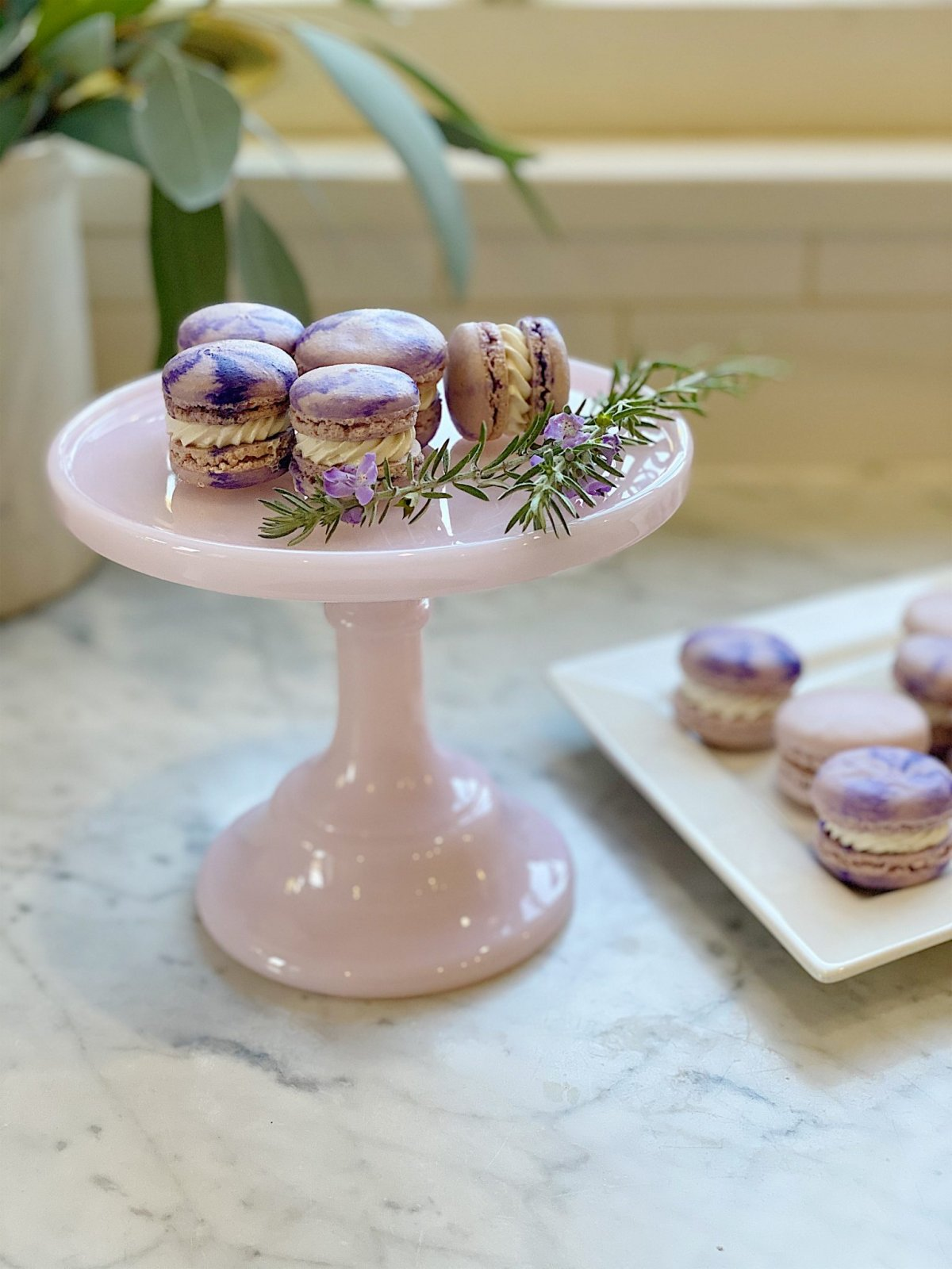 Macaron Cookies Recipe