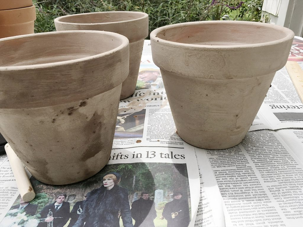 DIY How to Age Terra Cotta pots