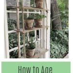 How to Age Terra Cotta Pots
