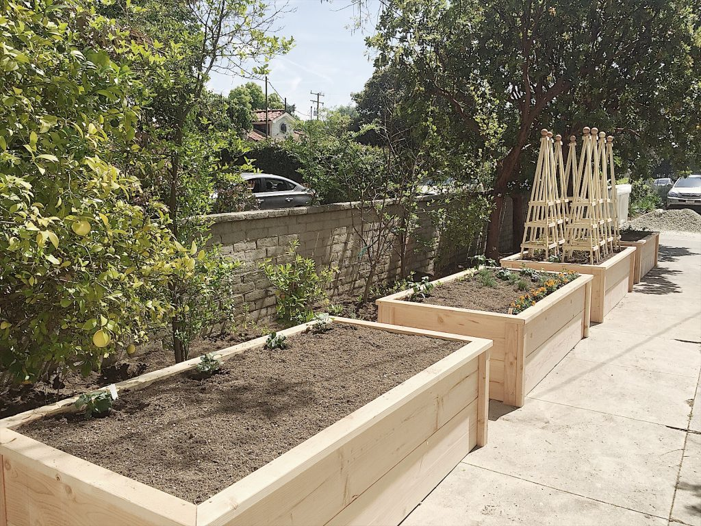 Hot to Build Raised Vegetable Beds