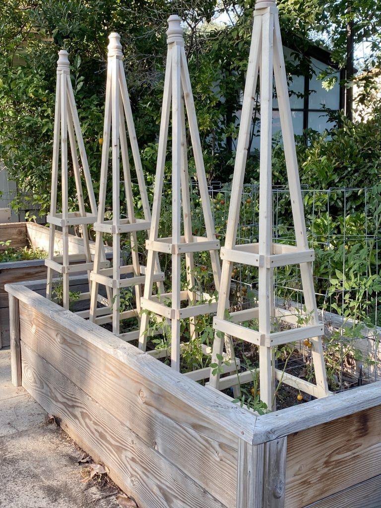 The Easiest Way to Build Tomato Cages