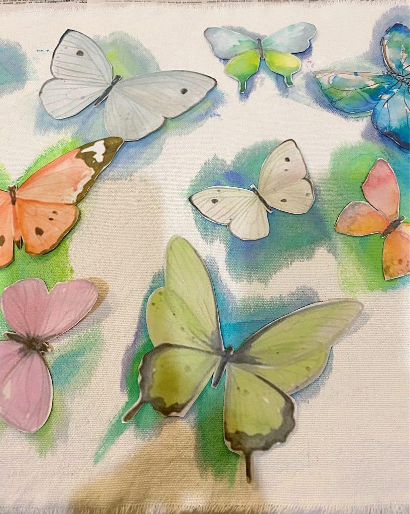 Tracing Butterflies