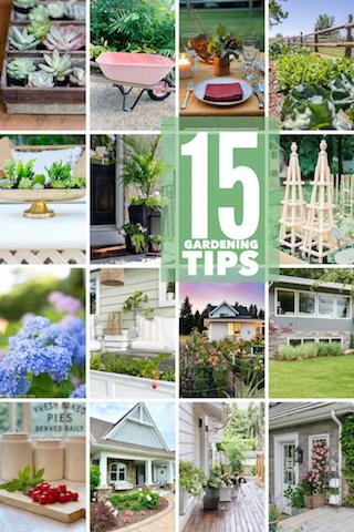 15 Gardening Tips
