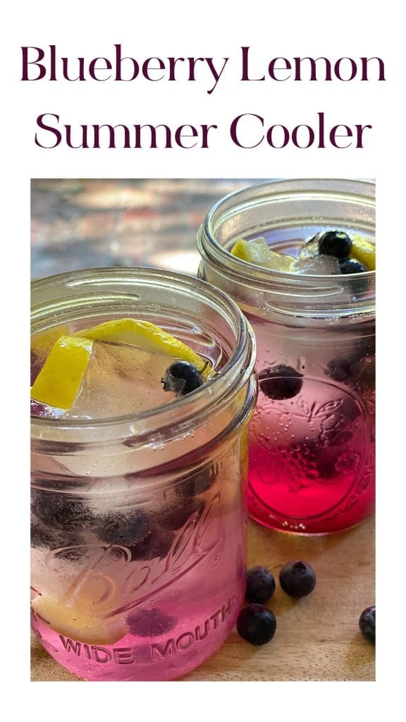 Blueberry and Lemon Summer Cooler