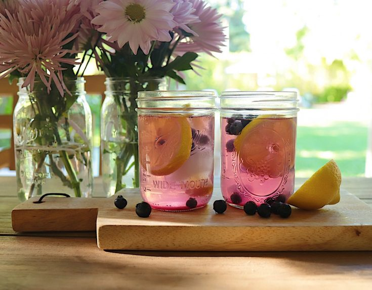 Blueberry Lemon Cooler Cocktail