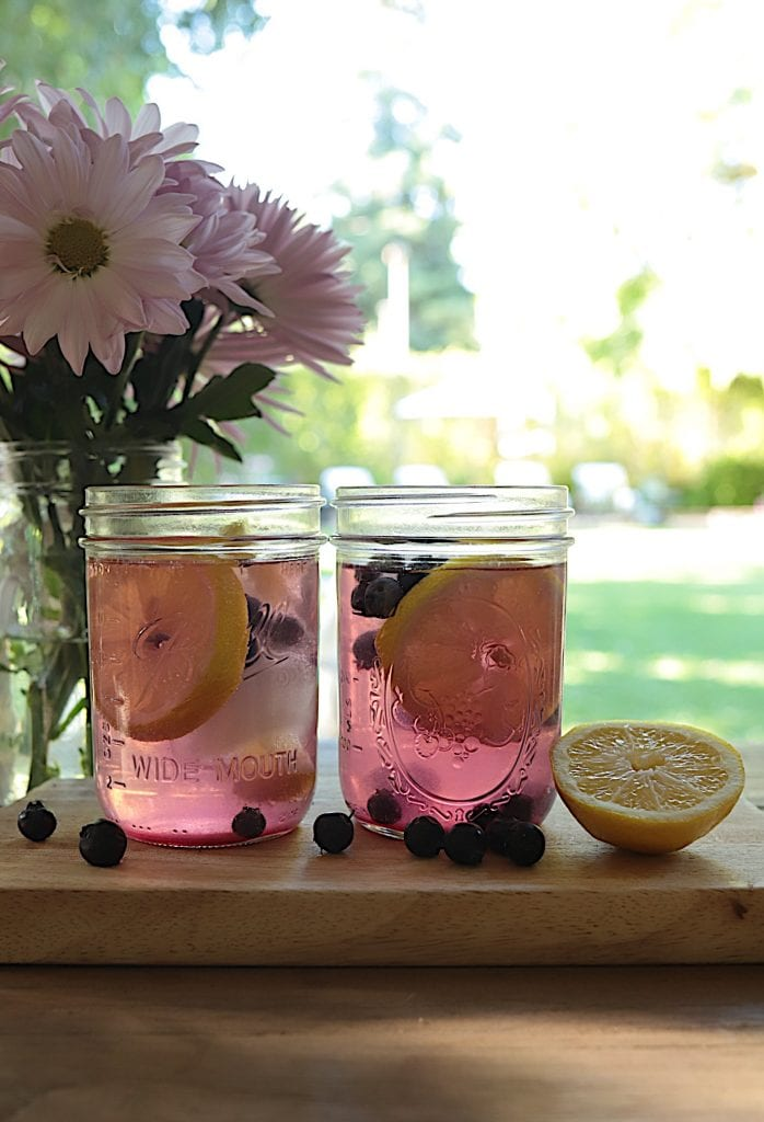 Blueberry Lemon Vodka Coolers