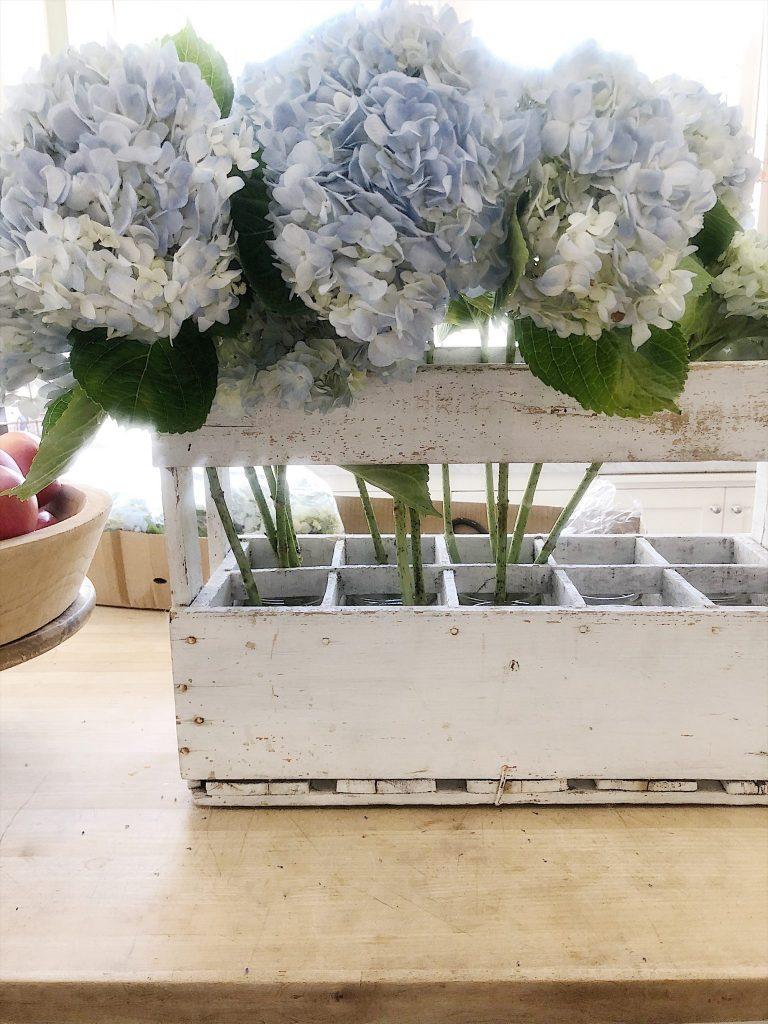 Arranging Blue Hydrangeas
