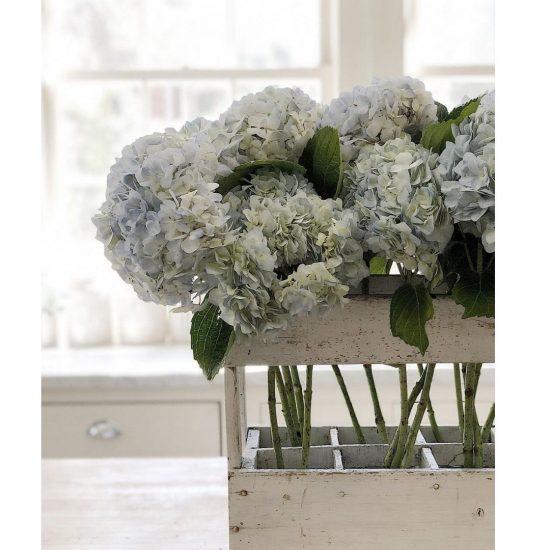 How To Arrange Hydrangeas Flowers