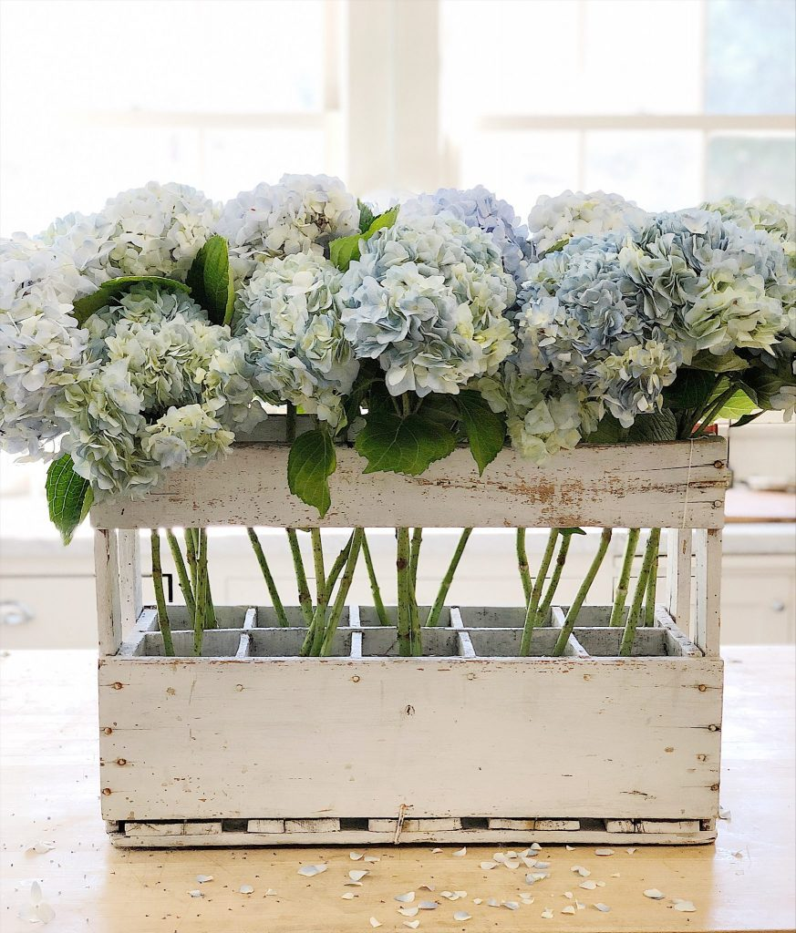 Hydrangea Flowers in a Champagne Crate