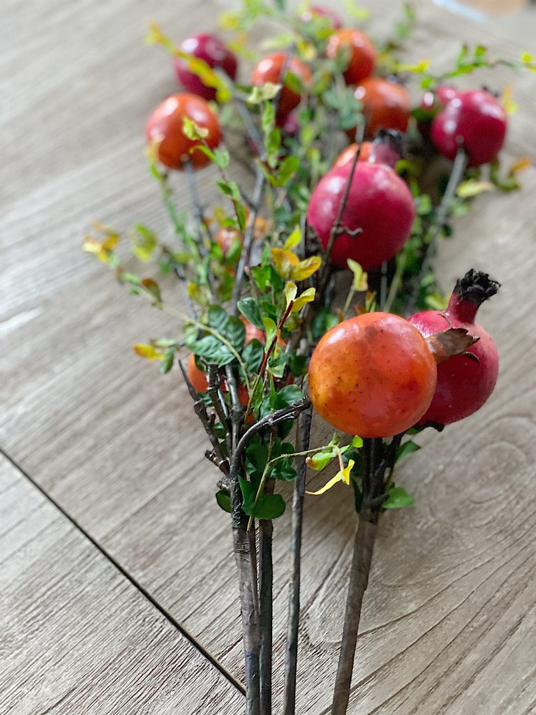 Pomegranate Stems