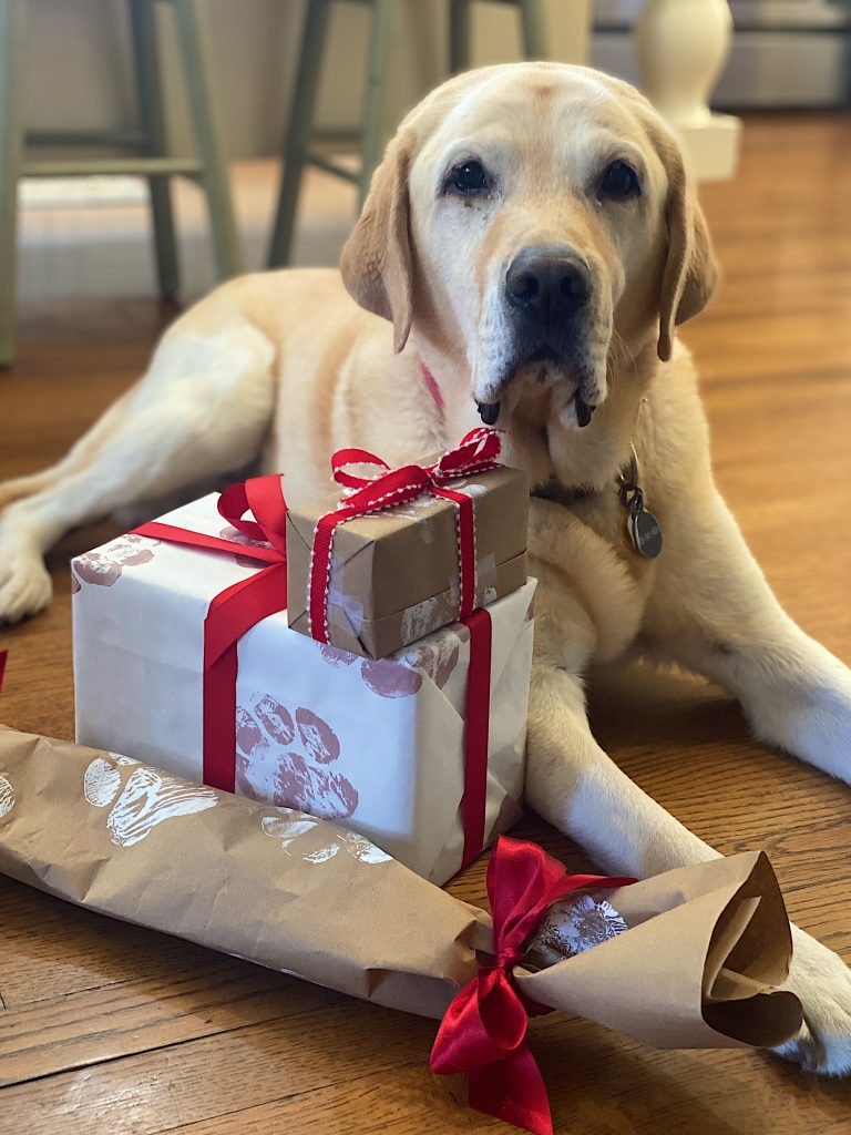 Pet Gift Wrapping Ideas