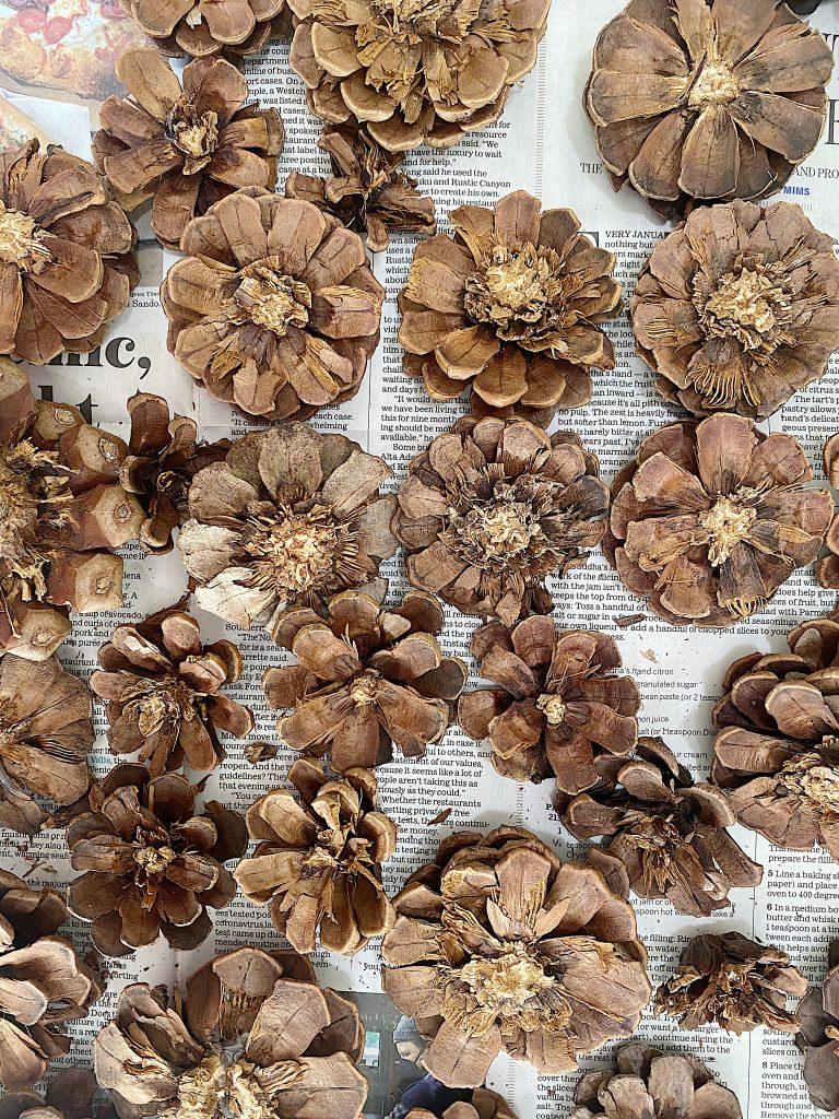 Pine Cone Wreath DIY Cut Pine Cones