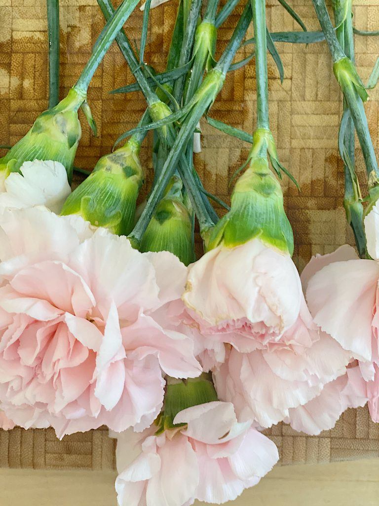 Pink Double Carnations