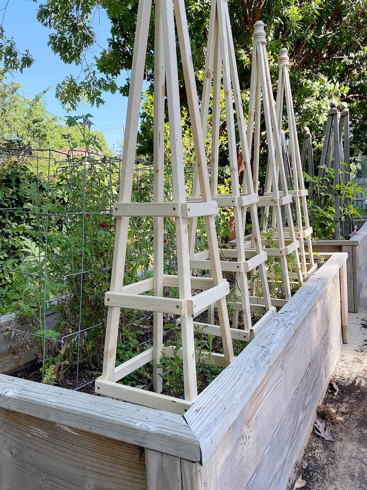 How-to-Make-Tomato-Cages