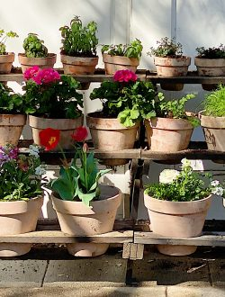 How to Make Vintage Garden Pots