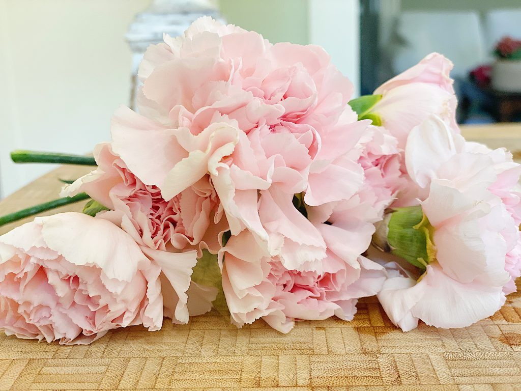 Pink Old Fashioned Carnations
