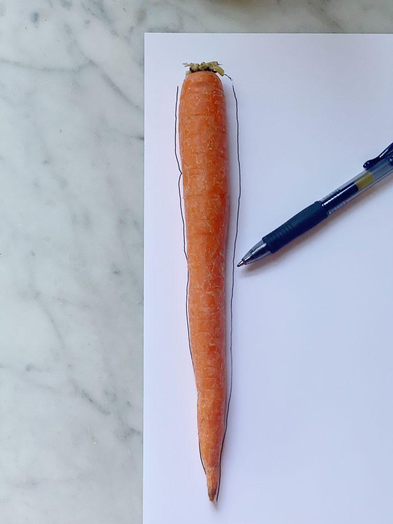 Understanding the Carrot