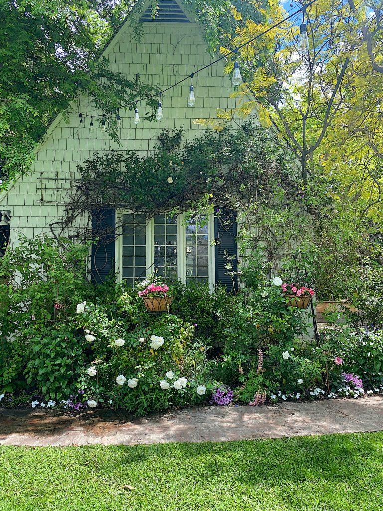 Backyard Garden Refresh