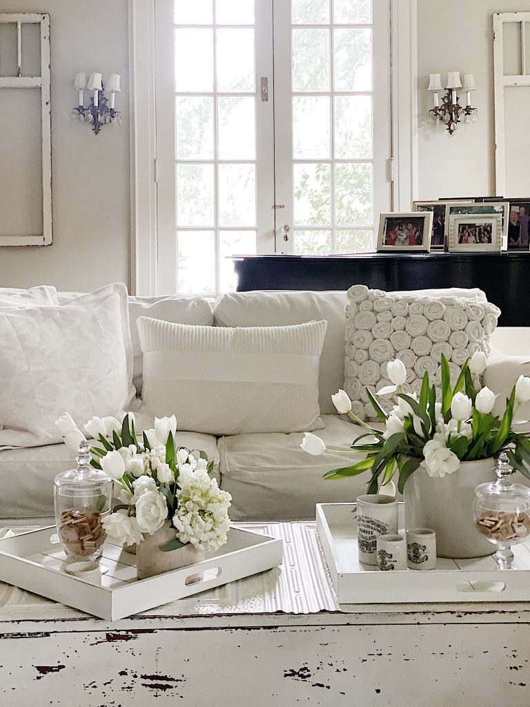 Decorative Serving Trays on the Coffee Table