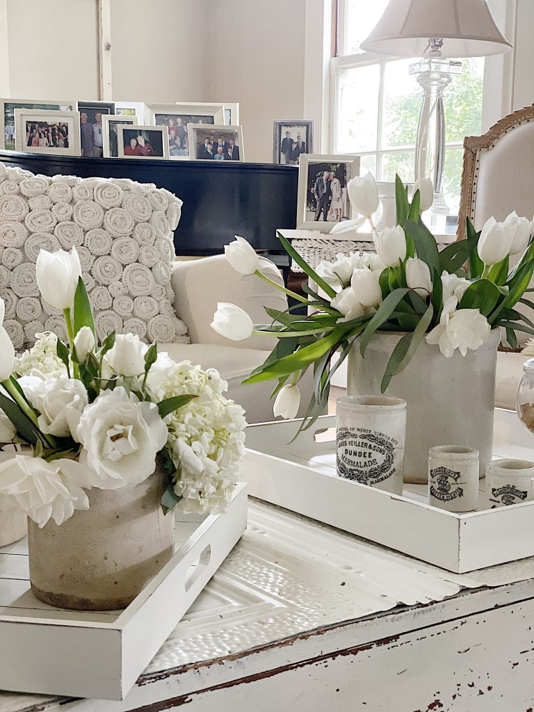 Decorative Serving Trays on the Living Room Coffee Table