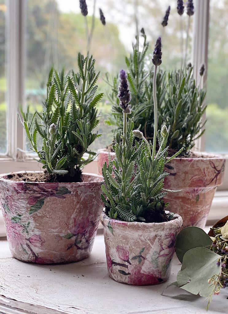 Decoupage Terra Cotta Pots with Lavender .