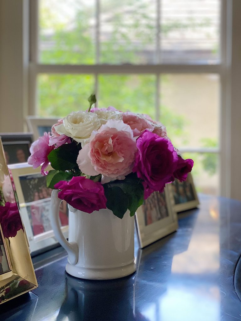 Gorgeous Roses for Mother's Day