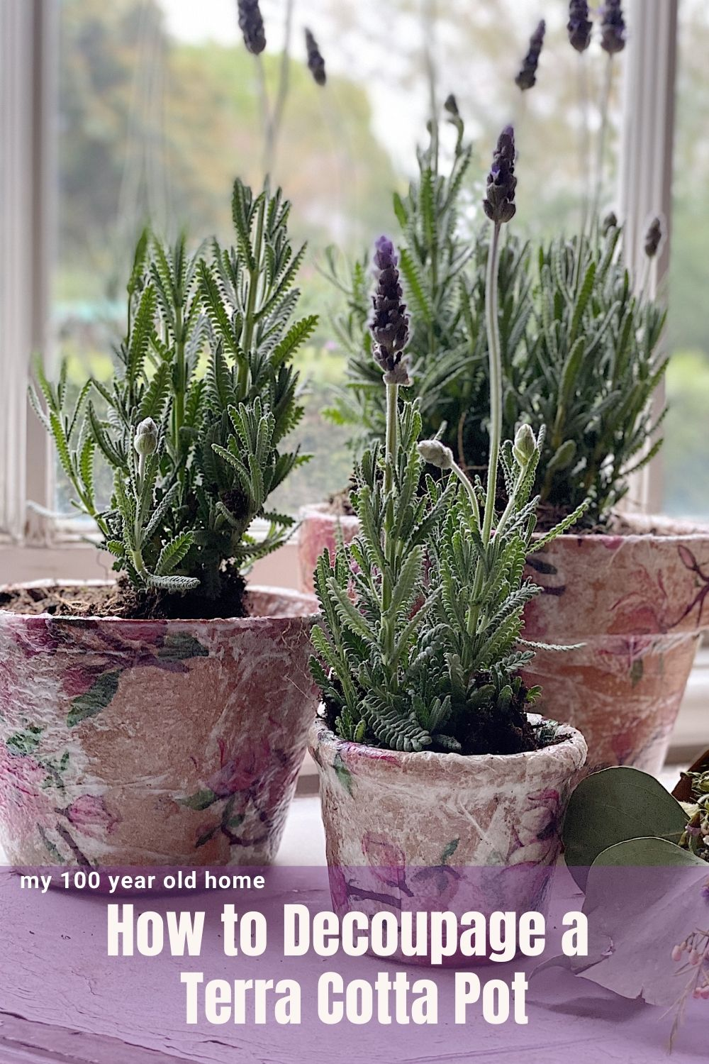 I love terra cotta pots and I thought it might be fun to try a decoupage project with some napkins. I used some old terra cotta pots and made these adorable pots to hold some fresh lavender.
