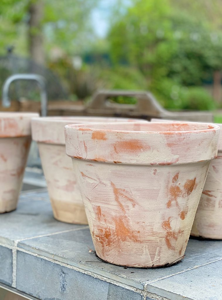 How to Use Terra Cotta Aged Pots