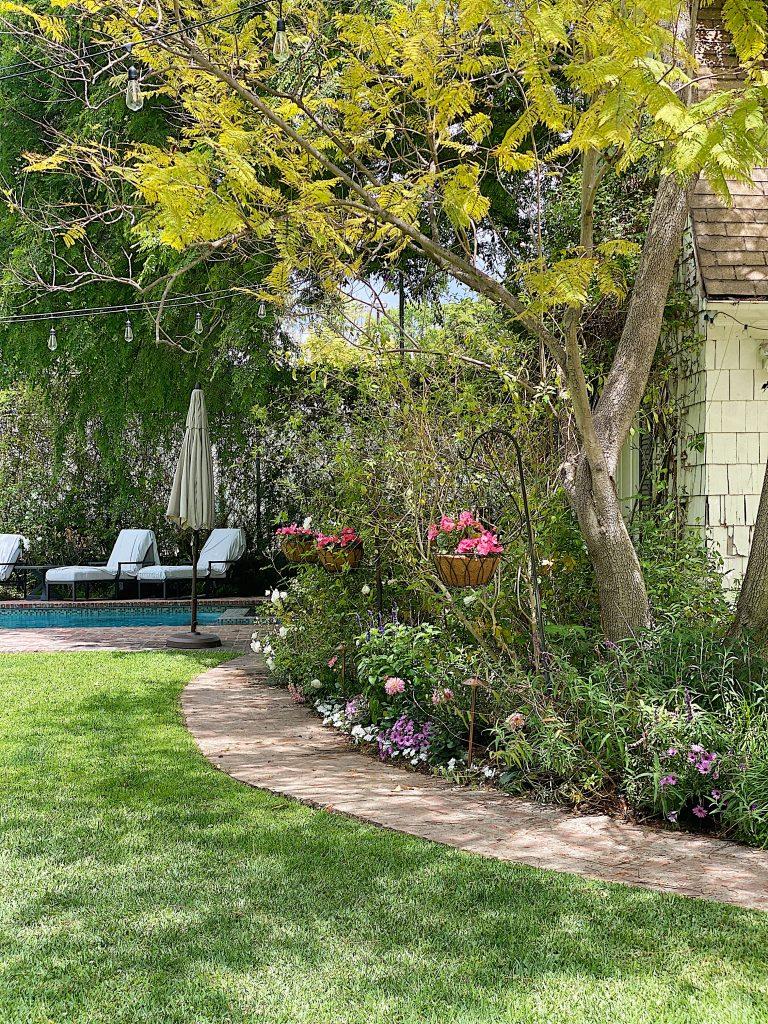 It's Time to Plant a Backyard Garden