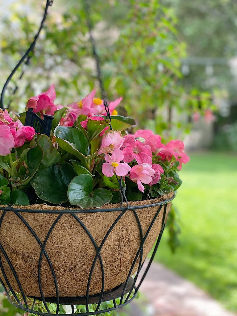It's Time to Plant a Backyard Garden with Hangin Pots