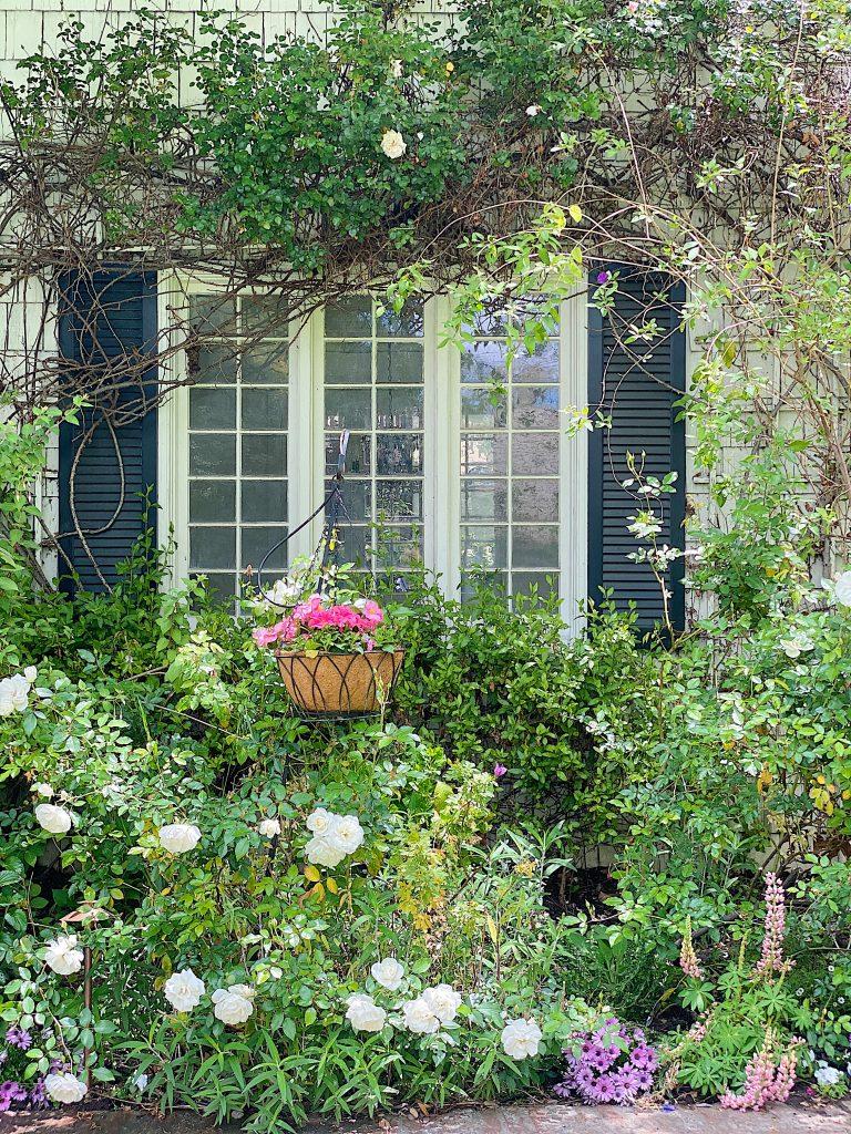 Let's Refresh our Backyard Garden