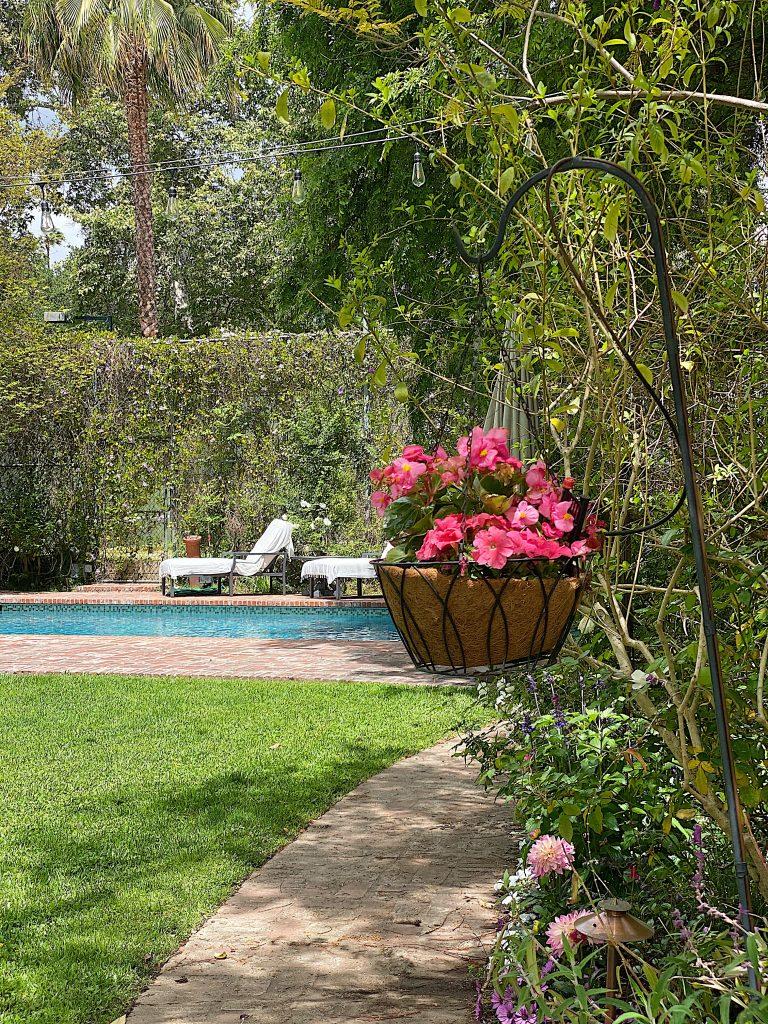 Plant a Backyard Garden