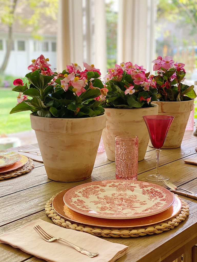 Setting the Table with Potted Plants