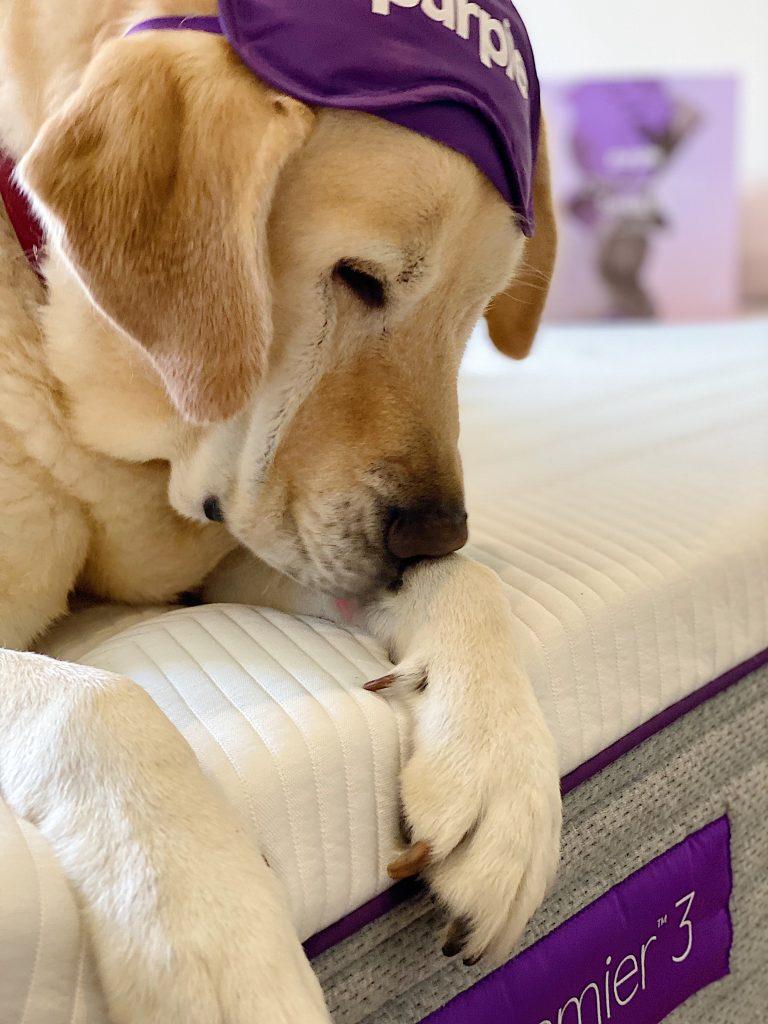 The Purple Mattress and Sport