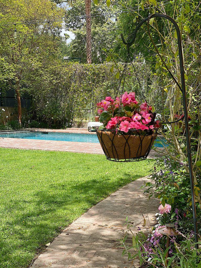 Time to Plant a Backyard Garden