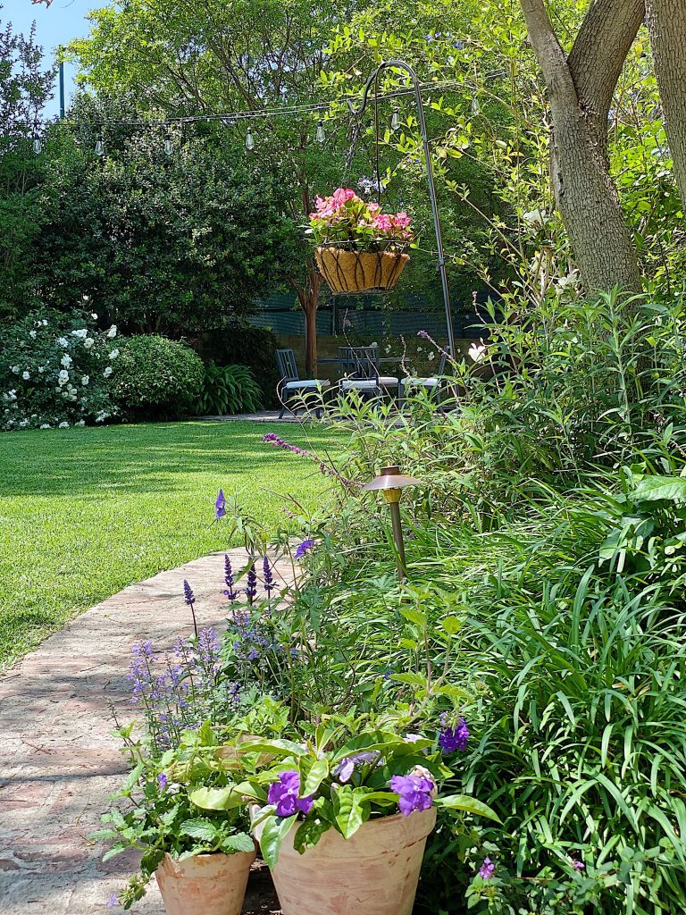 A Peek at the Garden