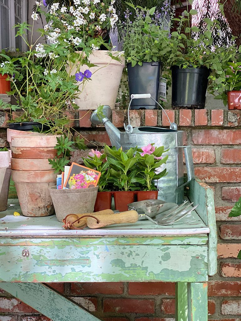 Pots, Plants and Potting Bench